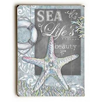 Sea Life's Beauty