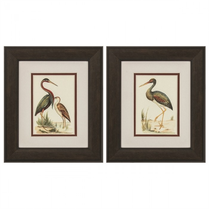 Water Birds Framed Art Set Of 2 Pacifichomefurniture Com