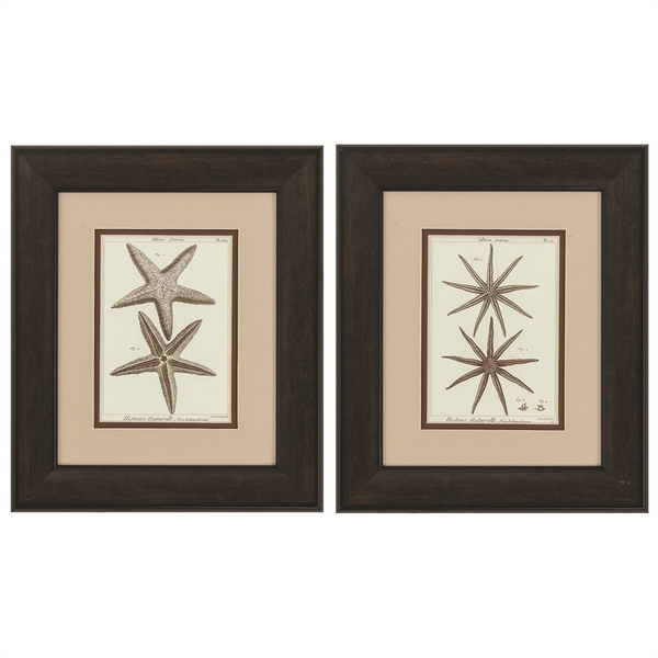 Striking Starfish Framed Art - Set of 2
