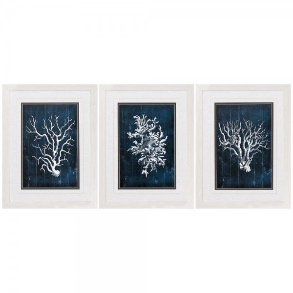 Coral Graphic Wall Prints - Set of 3