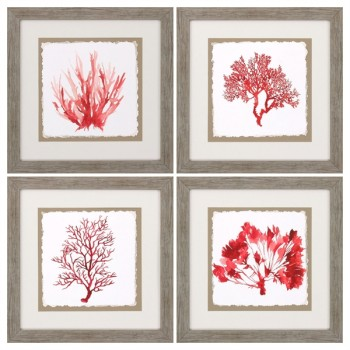 Red Coral Wall Art - Set of 4
